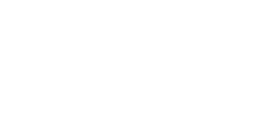 POLICE PROTECTION SERVICES